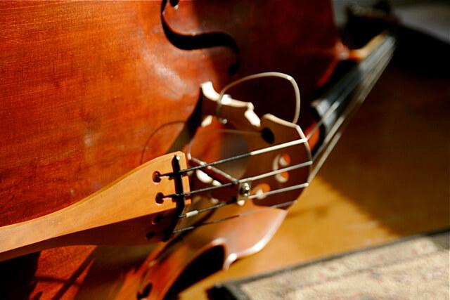 Instrumentos-musicales-de-cuerda
