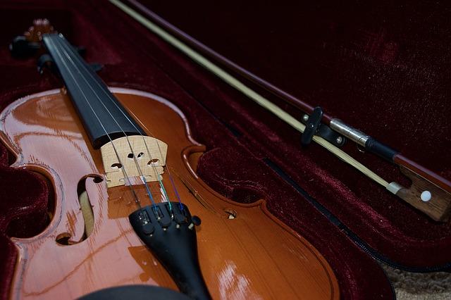 estuche-para-violin