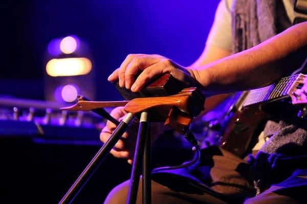 Tipo-de-instrumento-musical-electronico-Daxophone