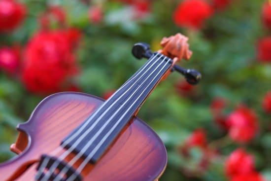 Tecnicas-para-tocar-instrumentos-cuerda-frotada