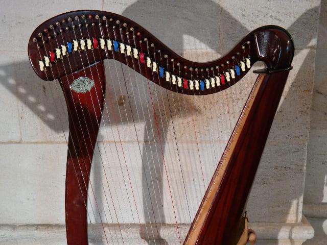 Arpa-Doppia-instrumento-de-cuerda-punteada