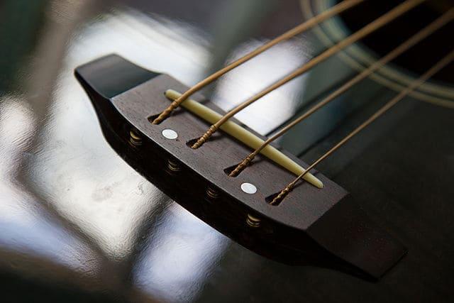 Bajo-acustico-instrumento-de-cuerda-punteada